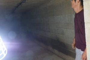 生姜の貯蔵庫内部