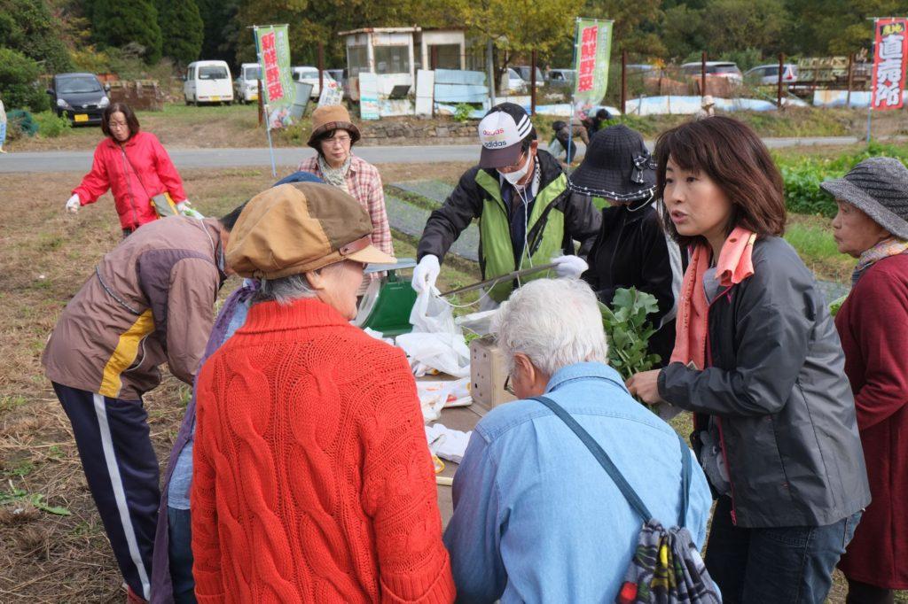 好評の野菜収穫